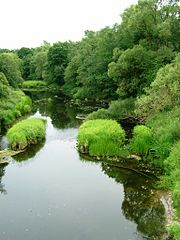 The river Jura at Kvedarna village