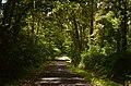 Jalanan ke arah sembalun di kawasan TN Gunung Rinjani 01.jpg