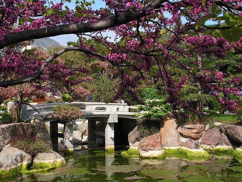 *:*:* ���� *:*:* 800px-Japanese-garden-Monaco.jpg