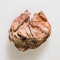 Jar sealing impressed with name of Queen Neithhotep MET 20.2.54 EGDP022699.jpg