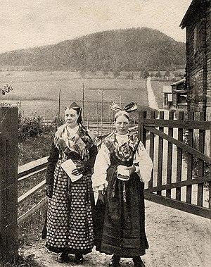 Järvsö - National costume from Järvsö around 1900.