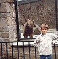 Jeremy the bear.jpg