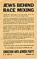 Jews Behind Race Mixing.jpg
