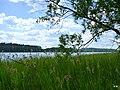 Jezioro Sępoleńskie. - panoramio.jpg