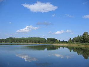 Jezioro Zbik Kos
