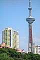 Jiangsu TV Tower (f9376055149).jpg