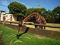 Jirafa-Zoo-BsAs.JPG