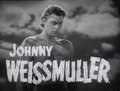 Johnny Weissmuller in Tarzan Finds a Son! (1939).png