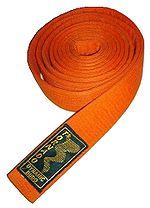 http://upload.wikimedia.org/wikipedia/commons/thumb/1/12/Karate_belt.jpg/150px-Karate_belt.jpg