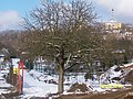 Kasztanowiec - panoramio.jpg