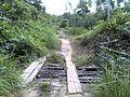 Kepala Gurung, Mentebah, Kapuas Hulu Regency, West Kalimantan, Indonesia - panoramio (5).jpg