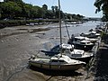 Kingsbridge harbour, at low tide - geograph.org.uk - 1434335.jpg