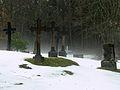 Kluki, cmentarz słowiński, ob. komunalny, pocz. XIX 01.jpg