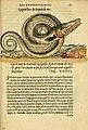 L'histoire naturelle des estranges poissons marins (Page 20) (5998390933).jpg