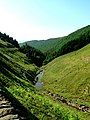Lady Clough (Snake Pass) in Derbyshire - geograph.org.uk - 189191.jpg