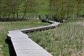 Lago d'Ampola (MGK12454).jpg