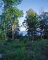Lake Mälaren (3824361351).jpg