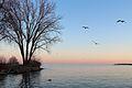Lake Ontario Dusk.jpg