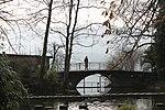 Lake Zurich - panoramio (50).jpg