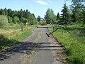 Lakeside Way - near Wellhaugh - geograph.org.uk - 1363840.jpg