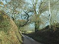 Lane to Ratsloe - geograph.org.uk - 1603408.jpg