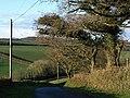 Lane to Tredundle - geograph.org.uk - 718233.jpg