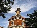 Las cigueñas de la Iglesia de San Marcos (16517055463).jpg