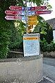 Laufen-Uhwiesen 2010-06-24 19-38-46.JPG