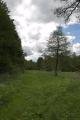 Lautertal Meiches Dirlammen SCI 555520683 Wannbach Ponds Magistersteg Fuerstenweg S.png