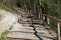 Leitenwälder der Isar 0662.jpg