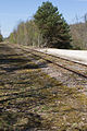 Ligne de Bourron-Marlotte à Malesherbes - 2013-04-21 - IMG 9334.jpg
