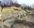 Limestone Exposure, Dudley, Worcestershire - geograph.org.uk - 637209.jpg