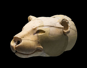 Alabaster lion rhyton from Knossos