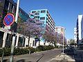 Lisboa-Portugal (34137768094).jpg