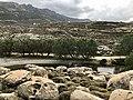 Livada's Biotope at Tinos.jpg