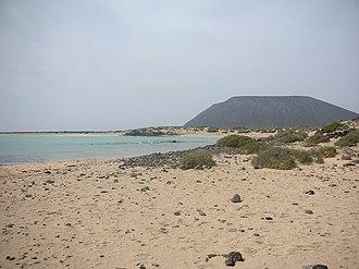 Lobos Island - Image: Lobos Island Playa de la Concha