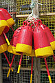Lobster Buoys Hanging.JPG