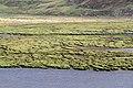 Loch Kishorn 3 (36761745754).jpg