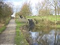 Lock staircase on the Hollinwood Branch Canal in Daisy Nook Country Park - geograph.org.uk - 1949.jpg