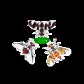 Logo-Regional-Tephritid-FruitFly-TEAM.png