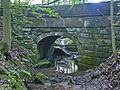 Lohmen-Brausnitz-Brücke-2.jpg