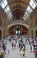 London MMB »184 Natural History Museum.jpg