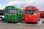 London Transport buses RF539 (NLE 539) & RF354 (MLL 991), 2012 North Weald bus rally.jpg