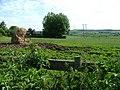Looking across farmland towards Emley Moor Transmitter - geograph.org.uk - 190916.jpg