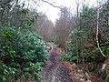 Lower Beeding, UK - panoramio (2).jpg