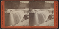 Lower Fall of Genesee at Portage, N.Y. (front view, instantaneous.), by Walker, L. E., 1826-1916.png