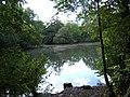 Lower Pond, Ashtead Park - geograph.org.uk - 62950.jpg