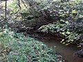 Luggie Water near Wester Glentore - geograph.org.uk - 1538045.jpg
