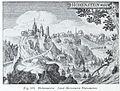 Luthmer V - 188 - Hohenstein nach Meissners Thesaurus.jpg