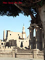 Luxor, Luxor City, Luxor, Luxor Governorate, Egypt - panoramio - youssef alam (2).jpg